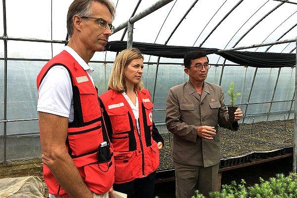 AMCDRR: Red Cross tackles humanitarian needs in Democratic People's Republic of Korea