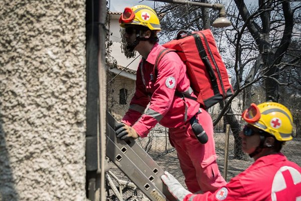 Summer wildfires continue to cause havoc in northern hemisphere