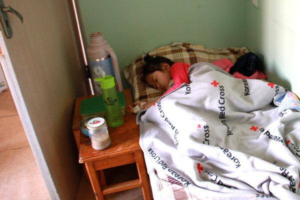 Influenza and extreme cold among 'deadly risks' combining against Mongolia's children