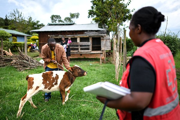 New  will help Kenyan farmers plan for both drought and floods