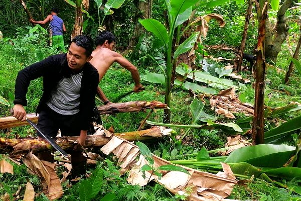Forecast-based financing operation underway as Typhoon Kammuri bears down on Philippines
