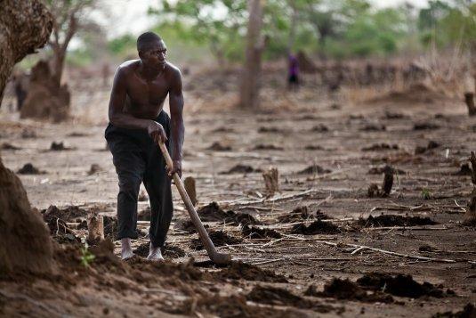 Debating climate adaptation:  many questions, a few clues