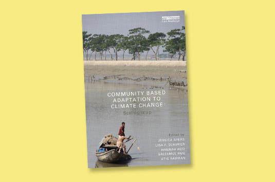 'Community-based adaptation': the future