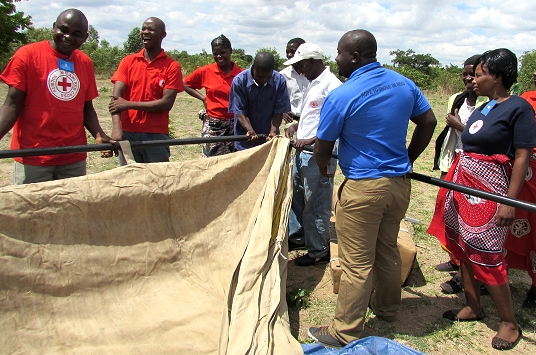 IFRC mobilizes to help nations in Southern Africa hit by disastrous seasonal floods
