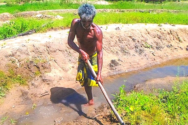 Helping Sri Lankan farmers become climate smart  in a changing world