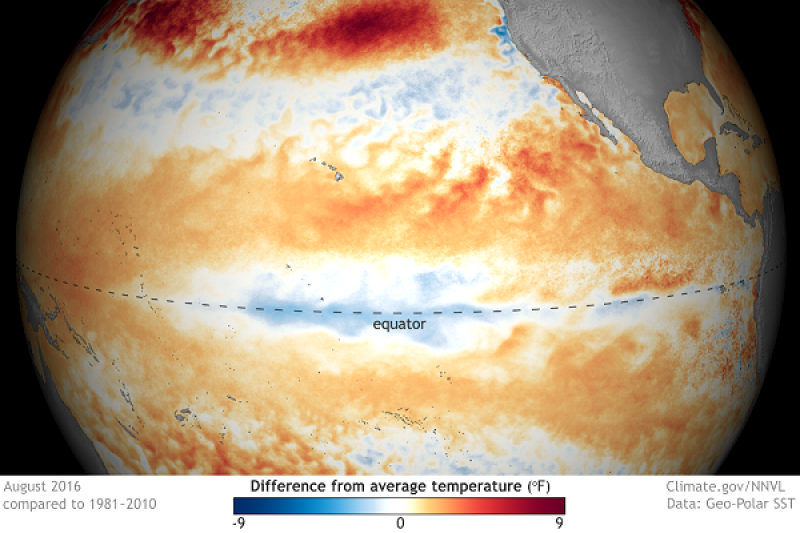 US scientists cancel official 'La Niña watch' as their forecast drops to 40% probability