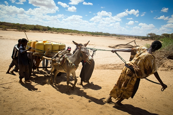 The struggle for water in Kenya: Red Cross drone video shows grip of drought as global appeal raised to $25m