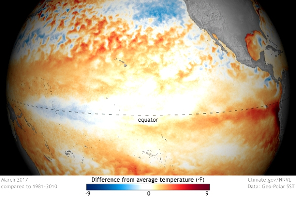 Probability of El Niño this year at least 50%