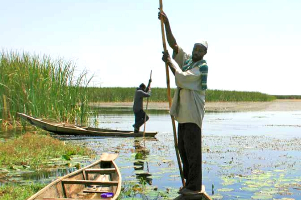 Report: Poor management of water resources  an overlooked cause of migration from Africa to Europe