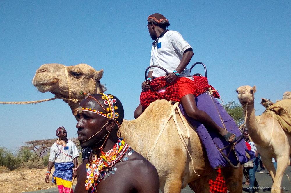 PfR Kenya camel caravan advocates for Ewaso Ngiro conservation