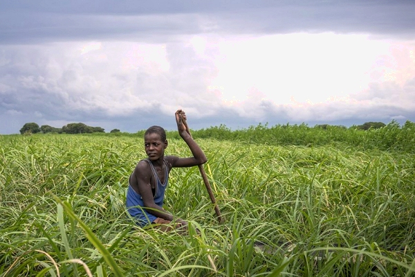 Conflict and climate change in South Sudan