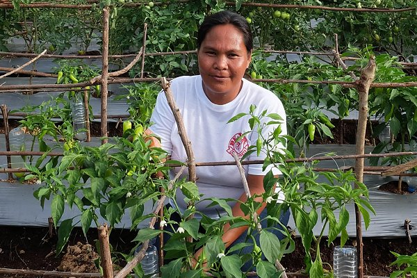 Local action, local heroes: PfR works on  climate, resilience and livelihoods in the Philippines