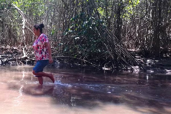 On Guatemala's Pacific coast, PfR helps womenget standards raised on land use, mangrove conservation