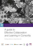 A Guide to Effective Collaboration and Learning in Consortia