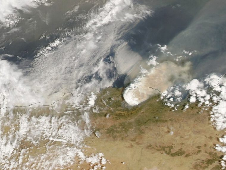 IFRC: Wildfires and Covid threaten tens of thousands in Algeria and Tunisia