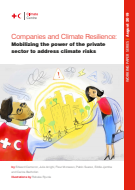 Companies and climate resilience: Mobilizing the power of the private sector to address climate risks