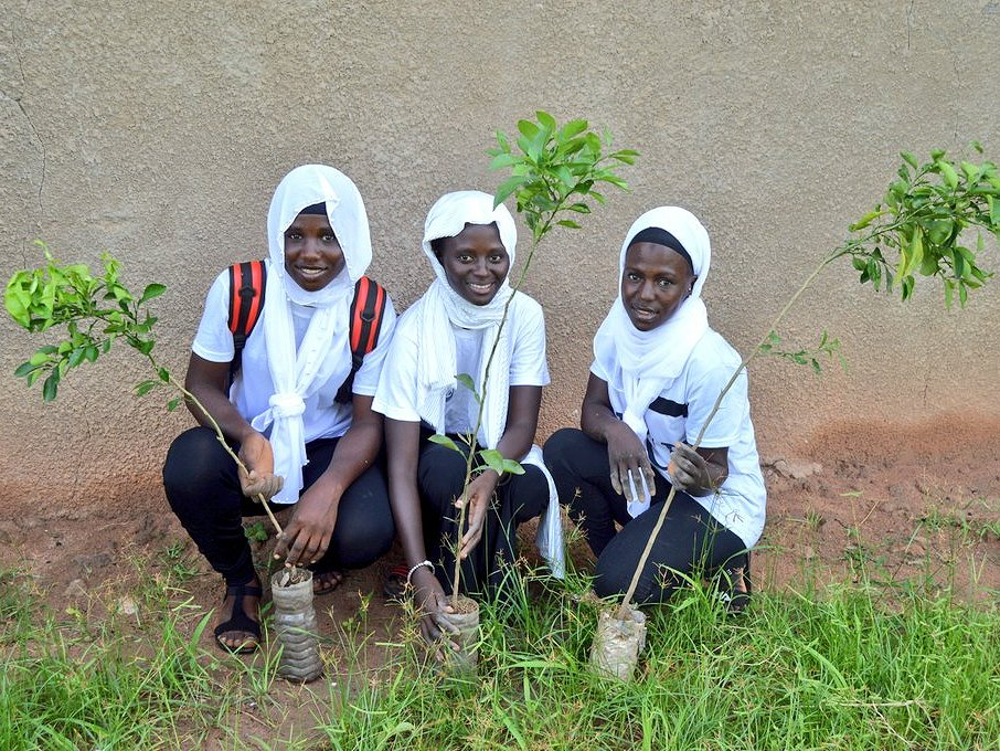 One million trees to protect vulnerable Gambian communities