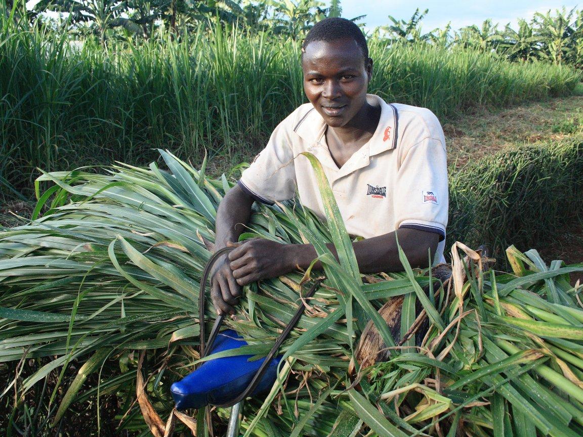 'Food provides life, health, hope'