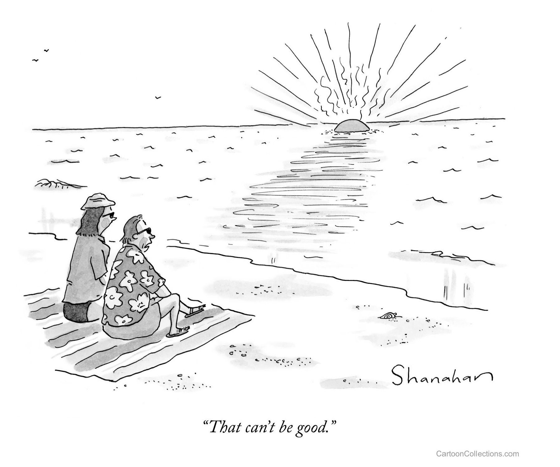Special Report on the Ocean and Cryosphere in a Changing Climate- explained in cartoons